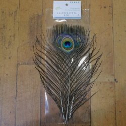 画像1: 【CANAL】 Green Peafowl Eye Sサイズ