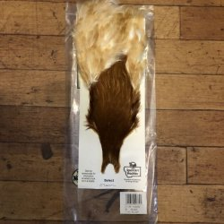 画像1: 【Spencer'sHackles】 SELECT BROWN HEN NECK #2(SALE)