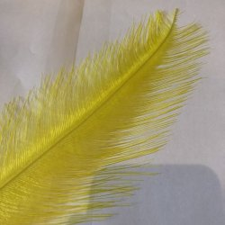 画像2: Rhea Feather Large