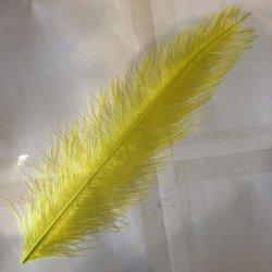 画像1: Rhea Feather Large