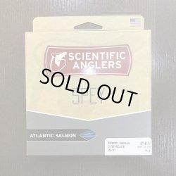 画像1: 【3M Mastery】 Atlantic Salmon Intermediate (DH)