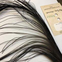 画像2: 【ANGLE】 BlueEared Pheasant tail Lサイズ No.6