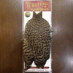 画像1: 【WHITING】Coq de Leon Hen Cape - Grizzly