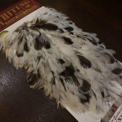 画像2: 【WHITING】Coq de Leon Hen Saddle - UNIQUE VARIANT