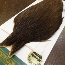 画像3: 【WHITING】Hebert Hen Cape - DARK BROWN DUN No.2