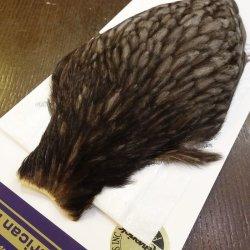 画像3: 【WHITING】American Hen Cape - NATURAL DARK DUN